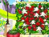 ロマンティックバラ花園