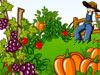 経営農場蔬果花園