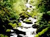 山の間小渓パズル