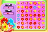FlowerFrenzy